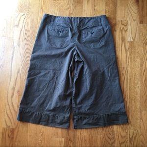 Ann Taylor loft Groucho shorts size 16